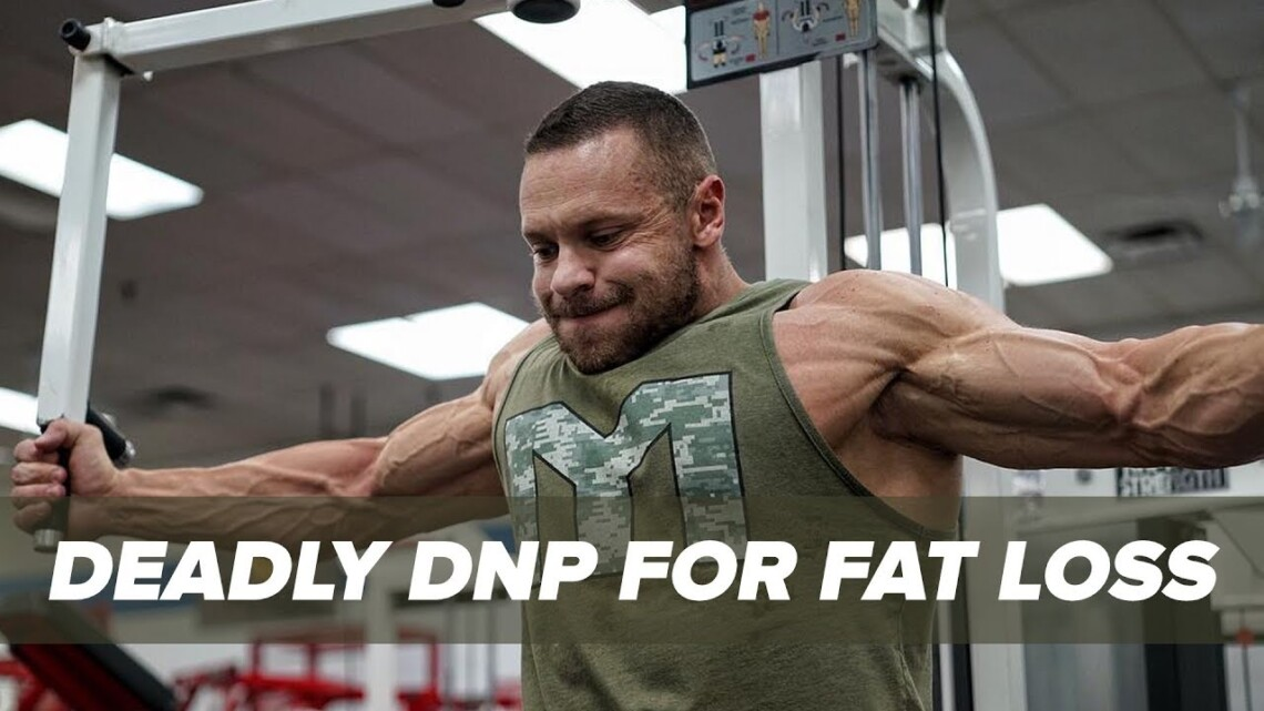 DNP and Fat Loss – Cooking Yourself From the Inside Out   Tiger Fitness