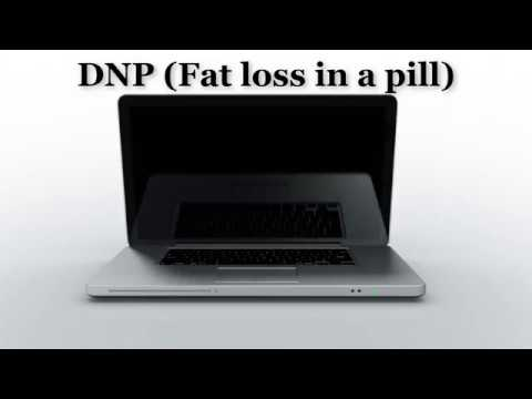 How to lose fat (DNP GUIDE)